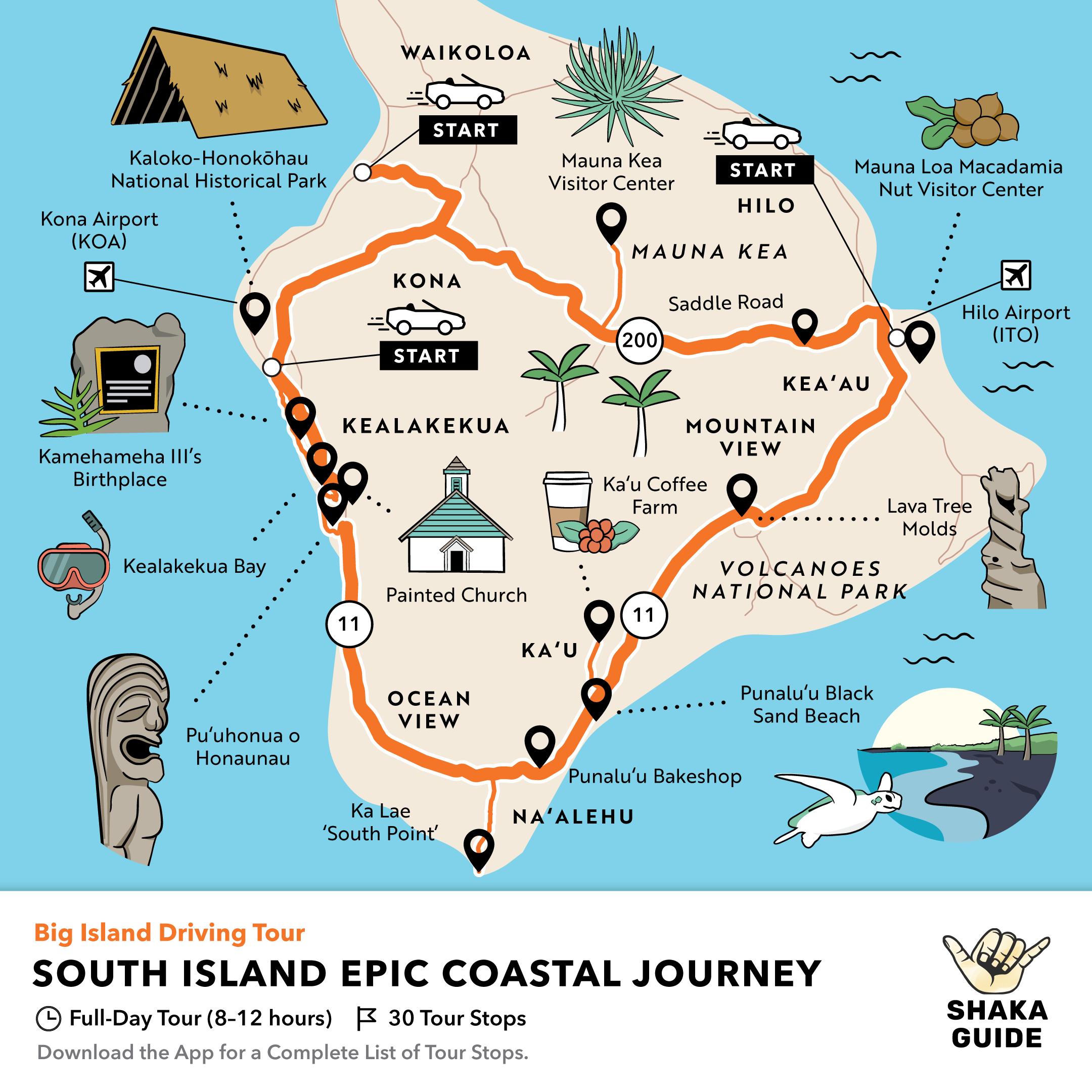 Shaka Guide's South Island Epic Coastal Journey