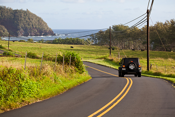 Road to Hana Shaka Guide Maui