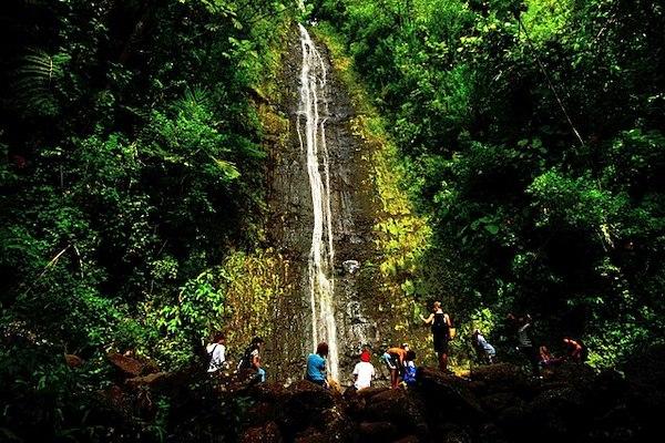 Oahu Waterfalls Travel Shaka Guide