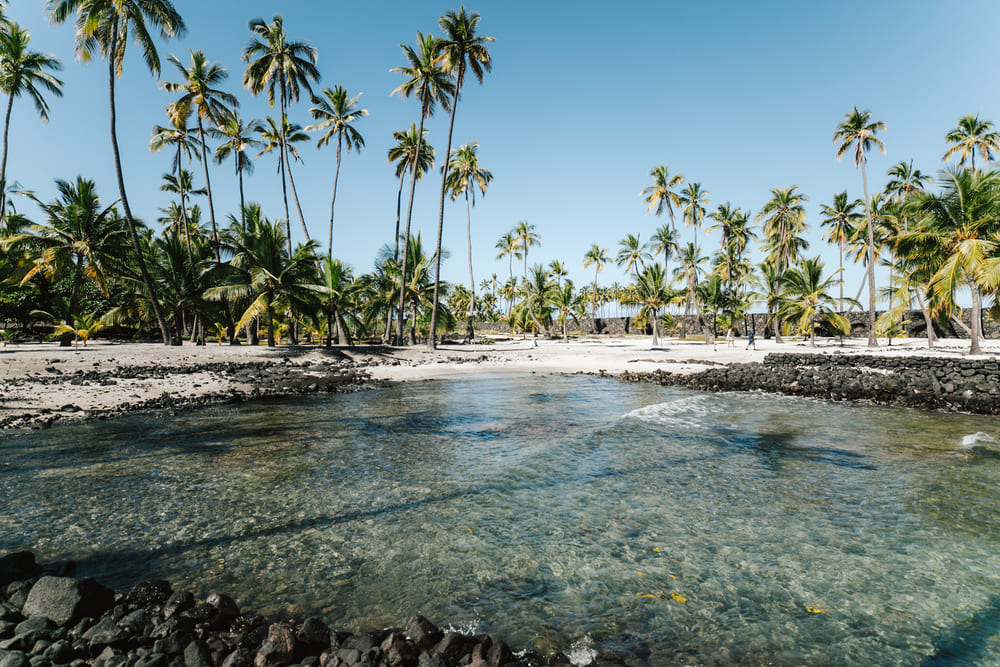 Best Beaches on the Kona Coast of Big Island Shaka Guide