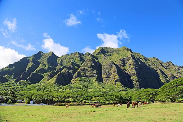 kualoa ranch oahu hawaii shaka guide grand circle island driving tour