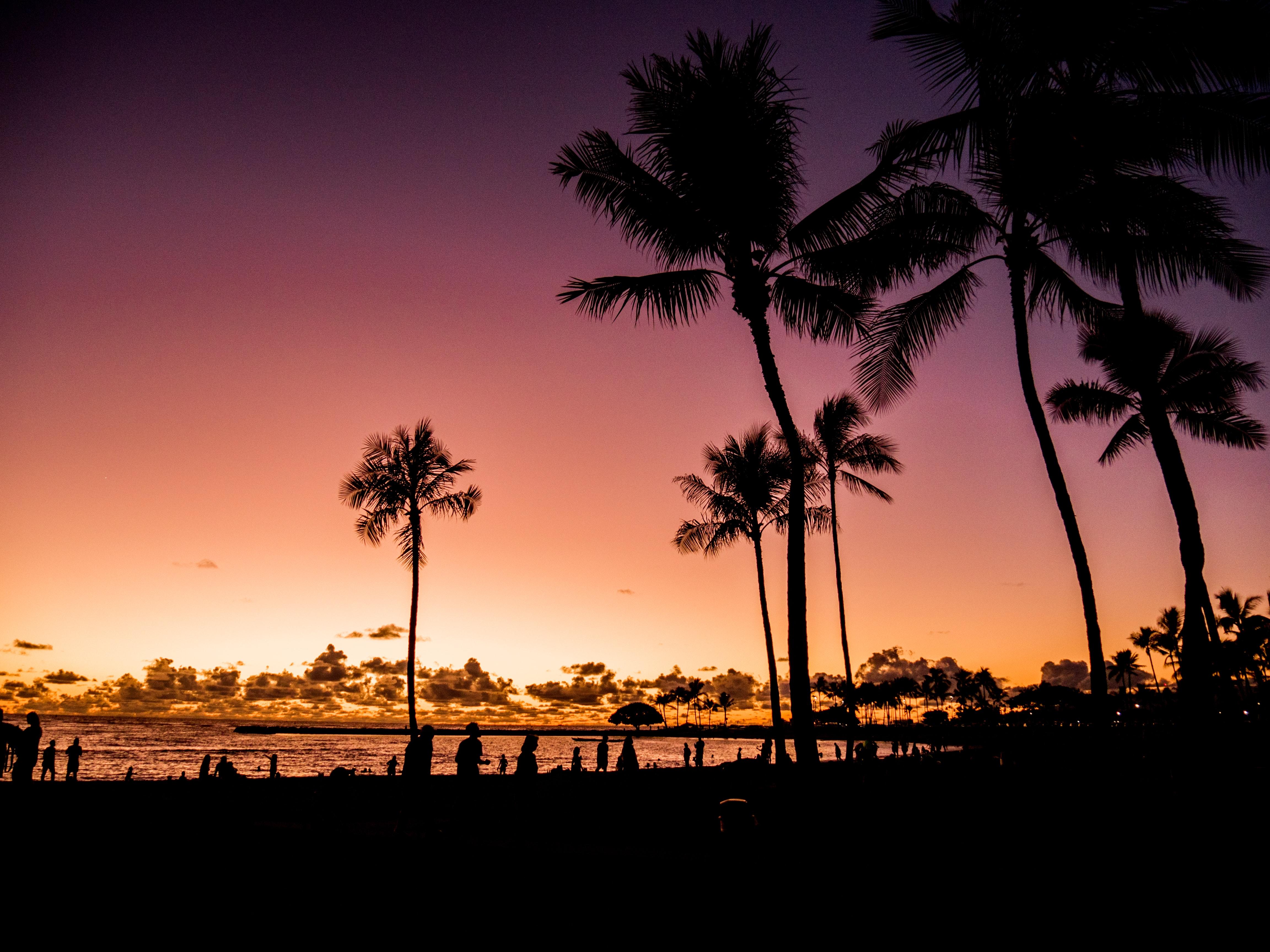 waikiki beach sunset Shaka Guide Oahu