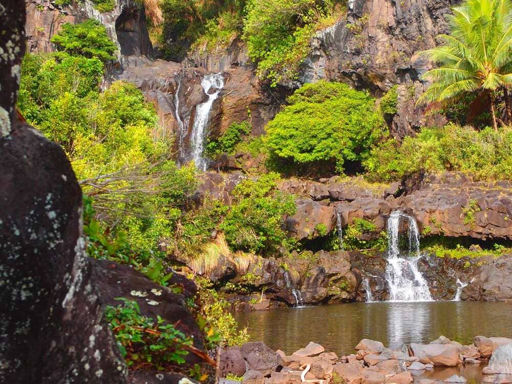 Seven Sacred Pools Kipahulu Maui Travel Shaka Guide