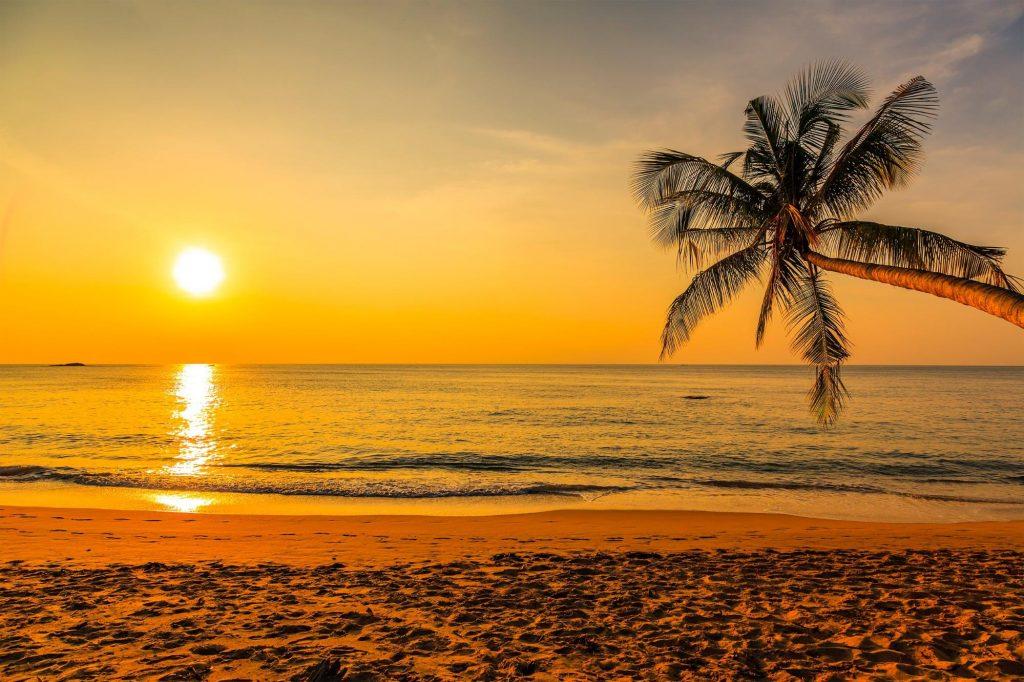 Sunset Beach Shaka Guide Oahu