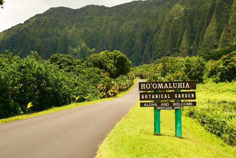 East Oahu Shoreline Drive Itinerary Shaka Guide